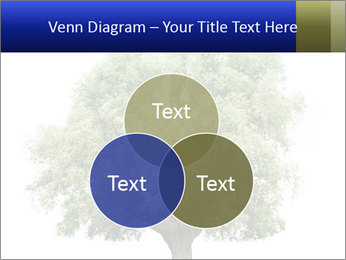 0000086103 PowerPoint Template - Slide 33
