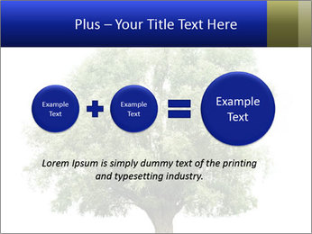0000086103 PowerPoint Template - Slide 75