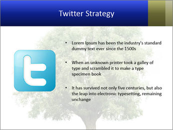0000086103 PowerPoint Template - Slide 9