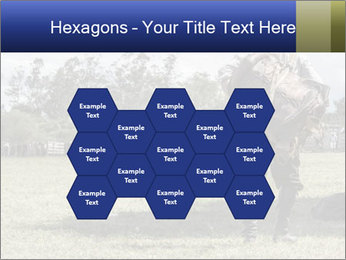 0000086115 PowerPoint Template - Slide 44
