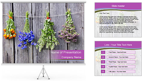 0000086118 PowerPoint Template