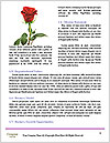 0000086118 Word Templates - Page 4