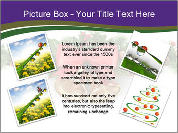 0000086126 PowerPoint Templates - Slide 24