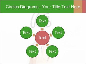 0000086128 PowerPoint Templates - Slide 78