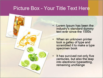 0000086129 PowerPoint Template - Slide 17