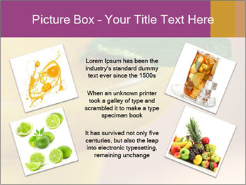 0000086129 PowerPoint Templates - Slide 24