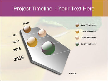 0000086129 PowerPoint Template - Slide 26