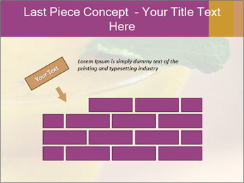 0000086129 PowerPoint Template - Slide 46