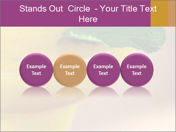 0000086129 PowerPoint Templates - Slide 76