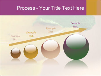 0000086129 PowerPoint Template - Slide 87