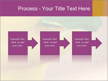 0000086129 PowerPoint Templates - Slide 88