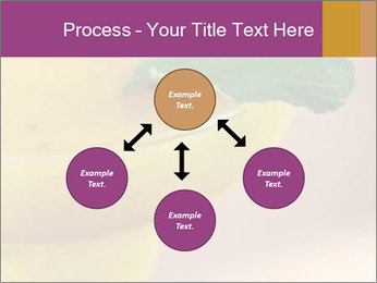 0000086129 PowerPoint Template - Slide 91