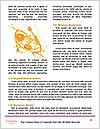 0000086129 Word Template - Page 4