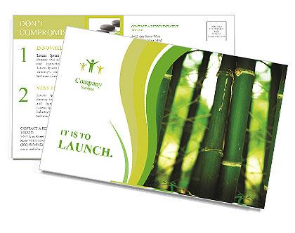 0000086130 Postcard Templates