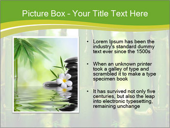 0000086130 PowerPoint Templates - Slide 13