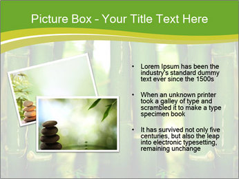 0000086130 PowerPoint Templates - Slide 20
