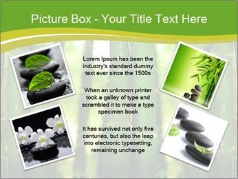 0000086130 PowerPoint Templates - Slide 24
