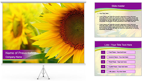 0000086143 PowerPoint Template