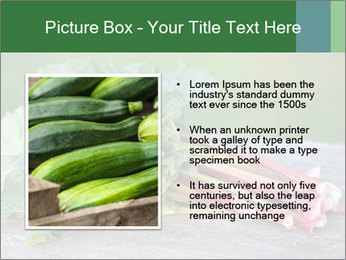 0000086144 PowerPoint Template - Slide 13
