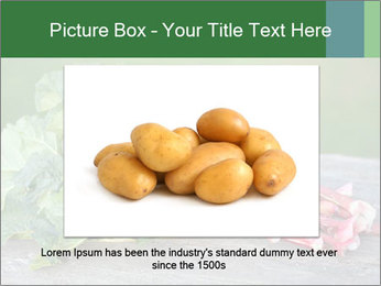 0000086144 PowerPoint Template - Slide 15
