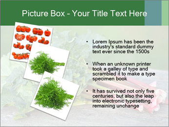 0000086144 PowerPoint Template - Slide 17