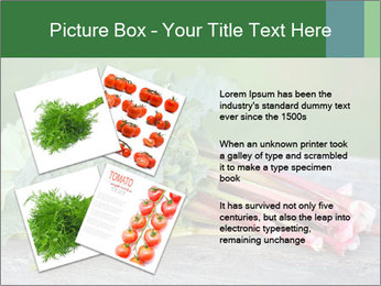 0000086144 PowerPoint Template - Slide 23