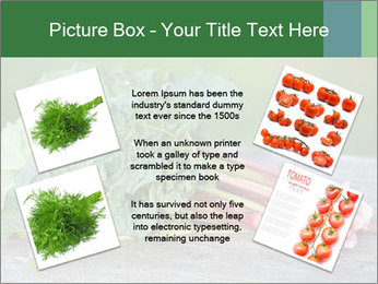 0000086144 PowerPoint Template - Slide 24