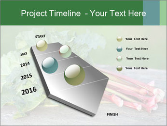 0000086144 PowerPoint Template - Slide 26