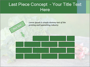 0000086144 PowerPoint Template - Slide 46