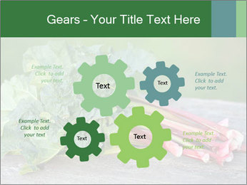 0000086144 PowerPoint Template - Slide 47