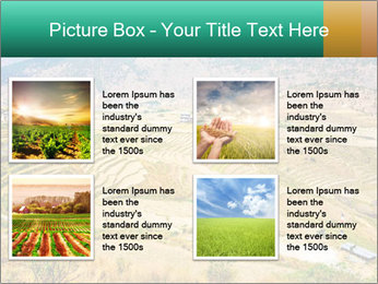 0000086146 PowerPoint Template - Slide 14