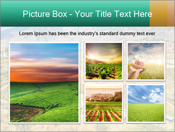 0000086146 PowerPoint Templates - Slide 19
