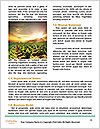 0000086146 Word Templates - Page 4