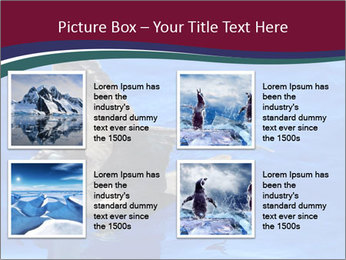 Grey-faced Petrel PowerPoint Templates - Slide 14