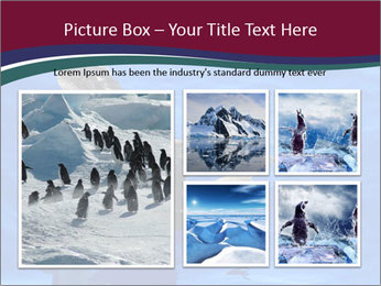 Grey-faced Petrel PowerPoint Templates - Slide 19