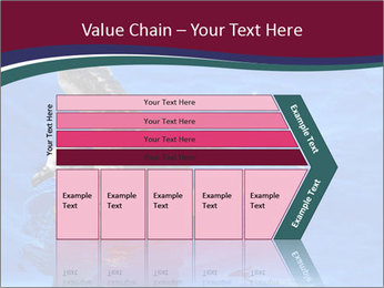 0000086151 PowerPoint Template - Slide 27