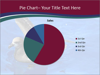 Grey-faced Petrel PowerPoint Templates - Slide 36
