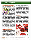0000086154 Word Templates - Page 3