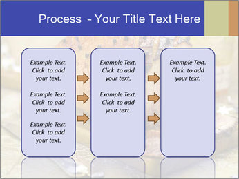 0000086155 PowerPoint Templates - Slide 86