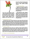 0000086156 Word Templates - Page 4