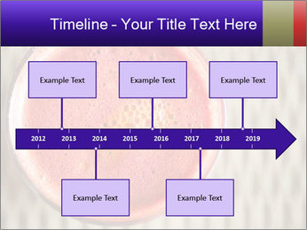 0000086159 PowerPoint Templates - Slide 28