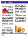 0000086159 Word Template - Page 3