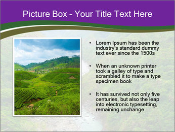 0000086166 PowerPoint Template - Slide 13