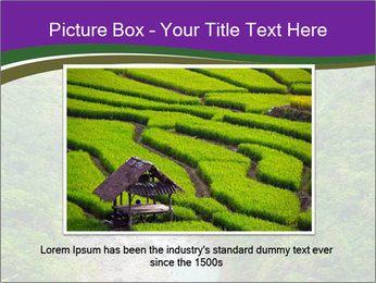 0000086166 PowerPoint Template - Slide 15