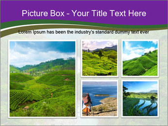 0000086166 PowerPoint Template - Slide 19