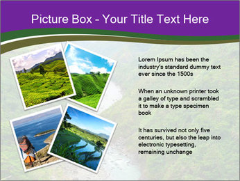 0000086166 PowerPoint Template - Slide 23