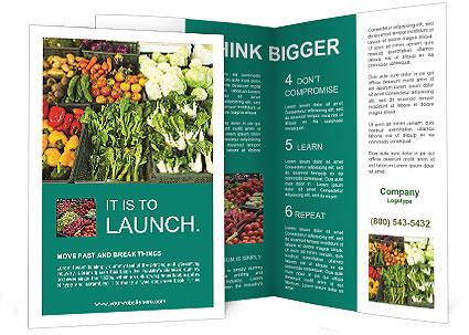 0000086179 Brochure Template