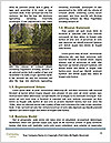 0000086181 Word Template - Page 4