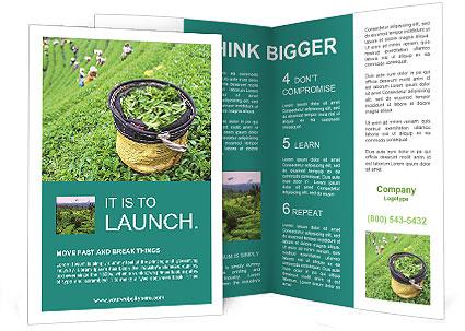 0000086183 Brochure Templates