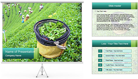 0000086183 PowerPoint Template